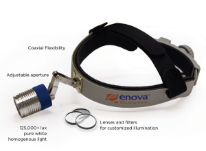 Enova Illumination Shedding Light